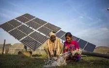 印度开发商仍不愿意竞标太阳能资产