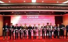 国际小型铅基堆联盟成立大会暨第一届理事会在中国合肥召开