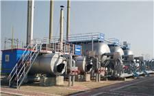 【中国灾害防御协会油气储运自然灾害防治专业委员会】在京成立