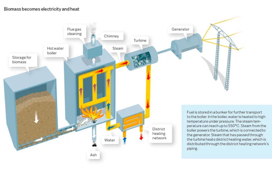阿根廷40兆瓦生物质发电厂将在6个月内投入使用