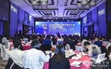 蚌埠市长王诚会见联合国代表张卫东,推动中国构建氢能经济