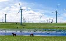 风电开发热点重归三北地区