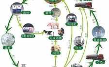 湖南嵩辉竹木公司生物质发电热电联供项目2018年年发电量达8000万度