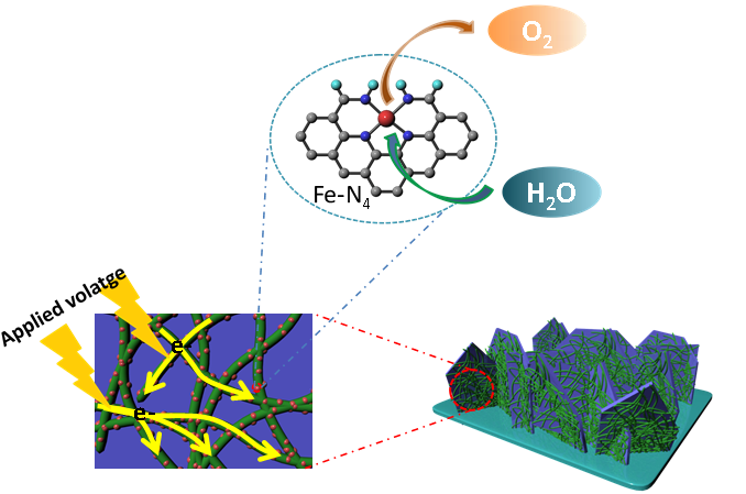 Fe-N4掺杂碳纳米纤维可提升酸性电催化制氢性能
