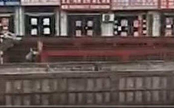 """目前神木煤矿彻底""""全军覆没""""关停,包括陕煤三大矿也已停产"""
