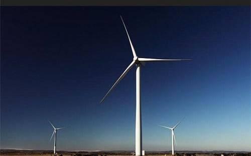 国家林业和草原局规范风电场项目建设林地使用问题