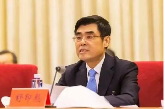 2019两会能源丨华能集团舒印彪对能源各领域全方位看法