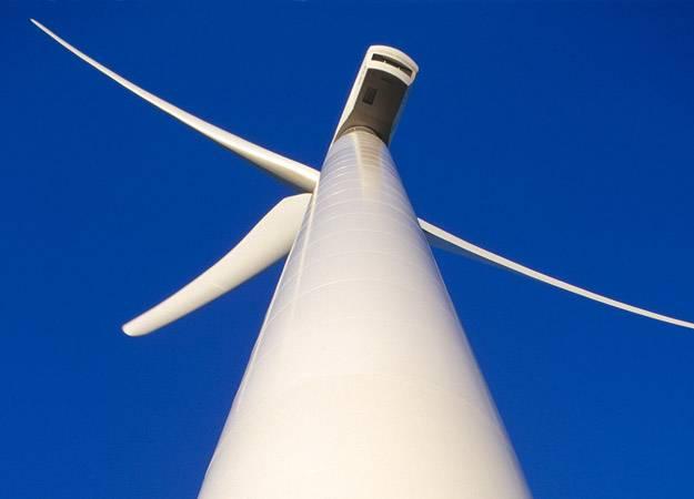 甘肃省林草局:8类区域禁止建设风电场项目