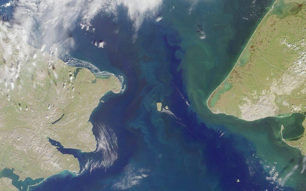 白令海峡首次发现福岛核事故污染物,放射性铯137轻微上升