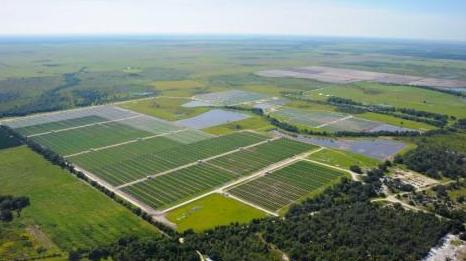 佛罗里达电力公司计划建造世界上最大的光伏电池储能系统