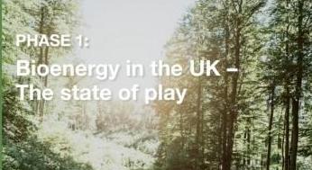 ?英国REA报告显示:生物能源是国家可再生能源的领导者
