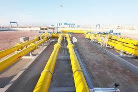 尼日利亚对天然气的需求偏好上升明显