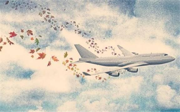 农林废弃物合成出高密度航空燃料,有望减少航空业造成的二氧化碳排放
