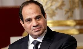 埃及总统强调电力发展及电网互联的重要性