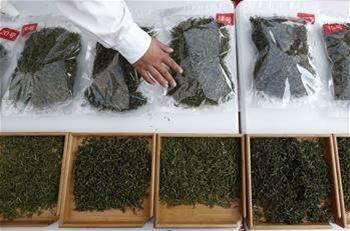 ?印度研究人员借助新型催化剂变石油废料为有用材料