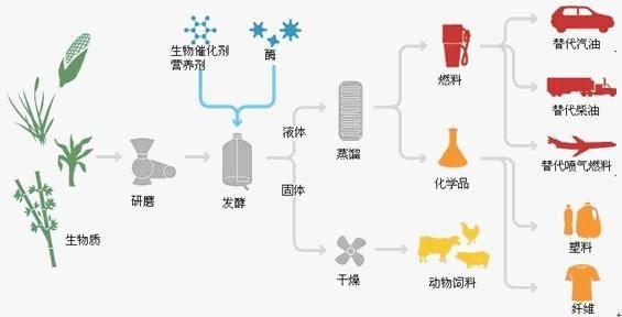 四大方面剖析未来的生物质能行业走向