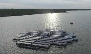 """荷兰建造世界最大太阳能电池板""""岛屿"""""""