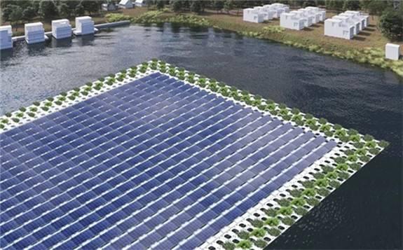 荷蘭計劃在水面安裝太陽能發電板 引環保組織擔憂