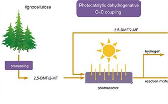 中科院大连化物所:在生物质制氢和柴油领域取得新进展