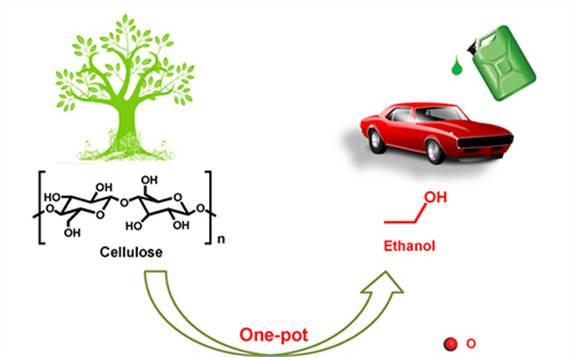 """生物质催化转化研究新进展:我国首次将纤维素""""一锅""""高效转化为乙醇"""