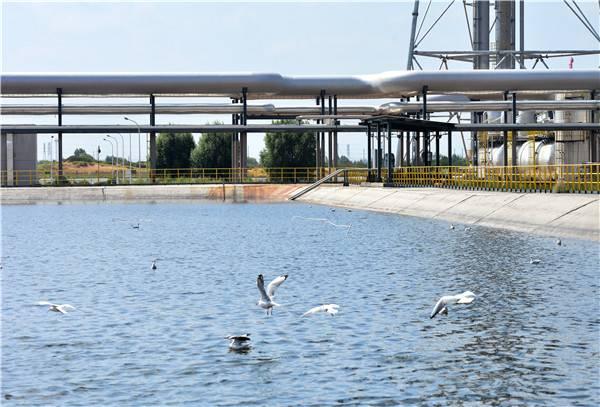 石化化工企业循环水系统存在巨大改进空间