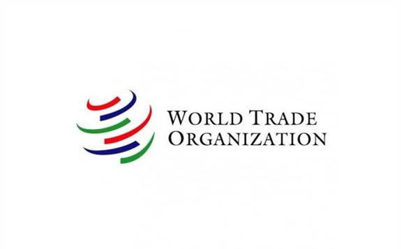世贸组织裁定美国对于中国光伏组件反补贴征税违规!
