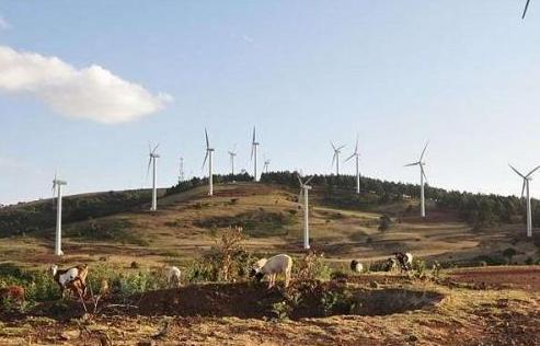 肯尼亚正式启动非洲最大风力发电场 可满足该国1/5能源需求