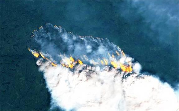 北极大火产生超5000万吨二氧化碳,相当整个瑞典一年排放