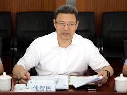 钱智民:内蒙等五个省风能和光伏发电开发1/60即可满足全国电力消费
