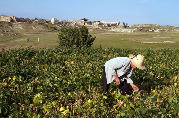 我国农村固体废弃物的资源综合利用潜力和潜在效益巨大