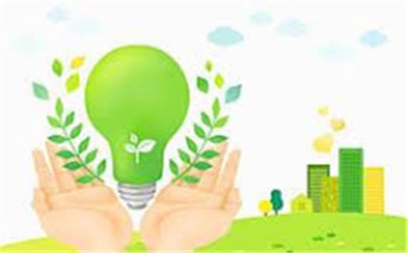 扬长避短 稳妥推进低碳化发展