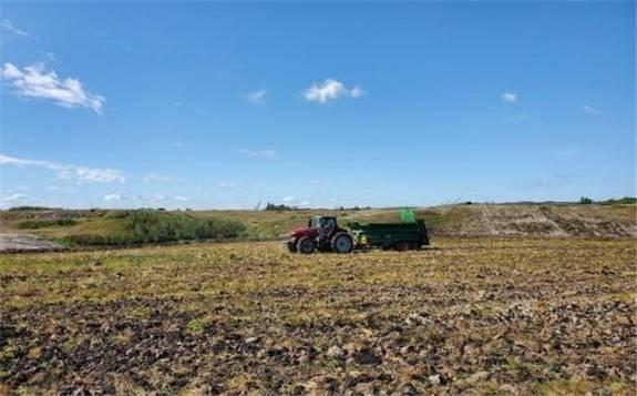 加拿大:煤矿复垦工程以柳条生产生物能源