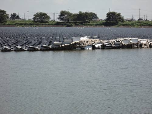 日本最大水上光伏电站因强风失火