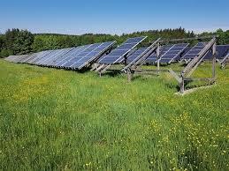 英国历史上首次整个季度内可再生能源发电量超化石燃料50%