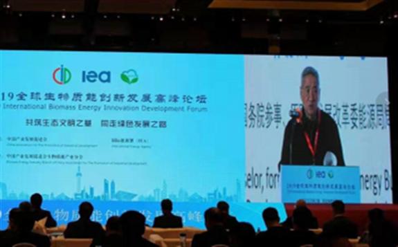 中国未来可再生能源发展的重要生力军:生物质能