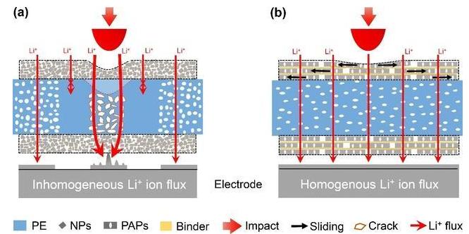 中國科大仿珍珠母層隔膜提升鋰電池抗沖擊性能