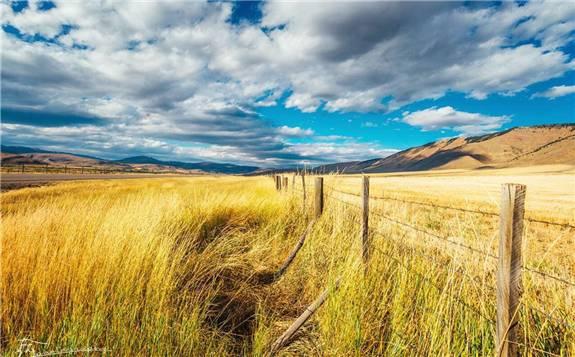 中国生物质能产业如何高质量发展?