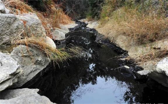 巴西海域的不明石油泄漏引发了大量关注
