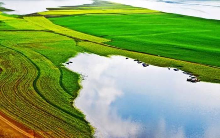 新疆首個開發區生態環保條例施行