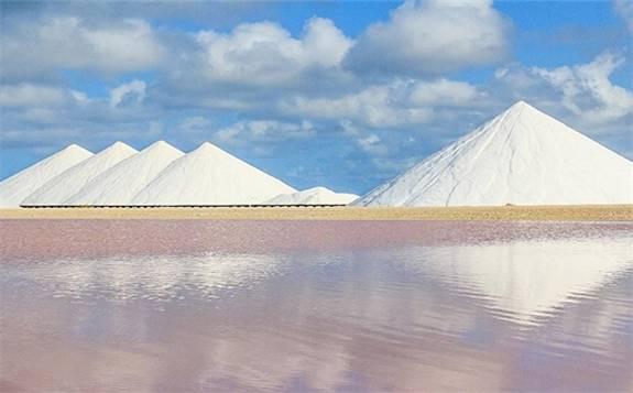 打3.6折無競價 *ST鹽湖資產由198億降到124.6億再次拍賣