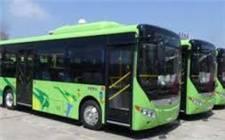 财政部提前下达2020年节能减排补助资金预算 新能源公交车运营补贴或将延续