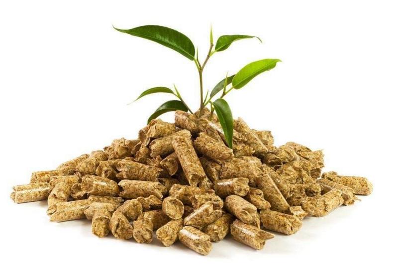 报告预测:日本可再生能源补贴驱动生物质消耗 木颗粒市场迅速扩大
