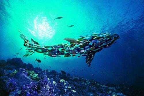 全球每年约800万吨塑料垃圾进入海洋!微塑料、纳米塑料的大量存在令人不安