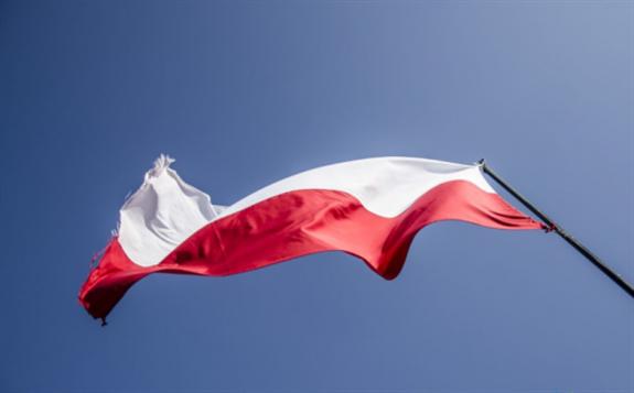 2019年波兰光伏装机量已达到1299.6MW,同比增长175.7%