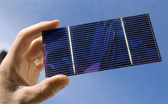 植物能高效吸取钙钛矿太阳能电池中的铅