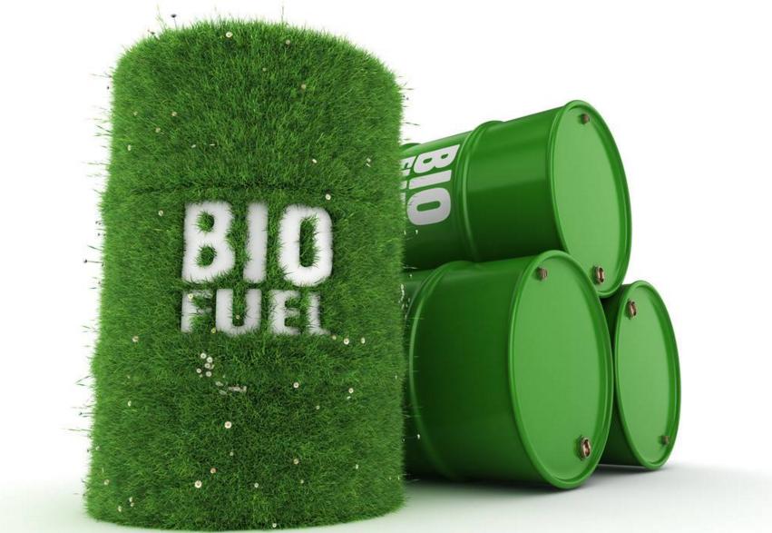 美国开发快速溶解植物纤维新工艺 降低生产生物燃料成本