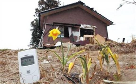 福岛核事故去污土壤再利用 以证其安全性