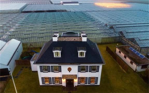 2019年荷蘭地熱能的使用增加了51%