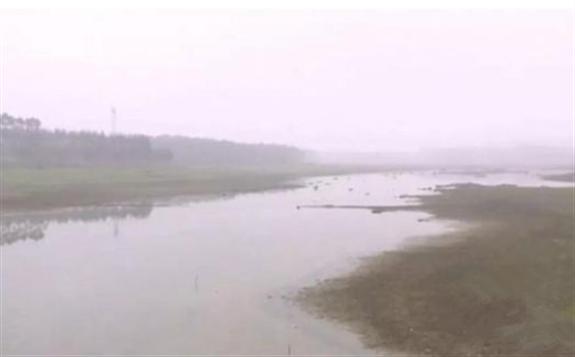 """中國最大規模的""""漁光互補""""發電站即將開工建設"""