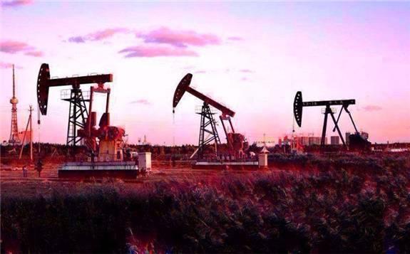 《中国油气产业发展分析与展望报告蓝皮书(2019-2020)》发布